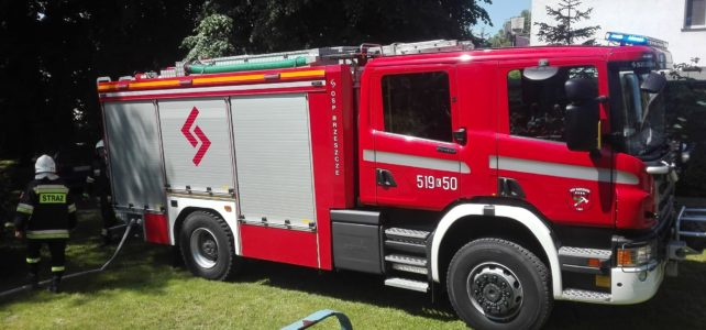 Pokaz strażacki